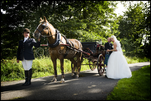 Michell and David, Wedding photograph with a horse and carriage