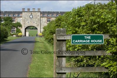 Blair Estate Garden Open Day, beautiful garden photographs