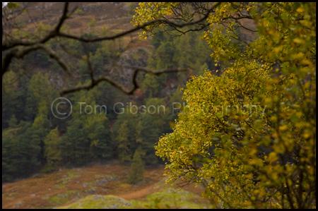 Scottish Landscape Photographer