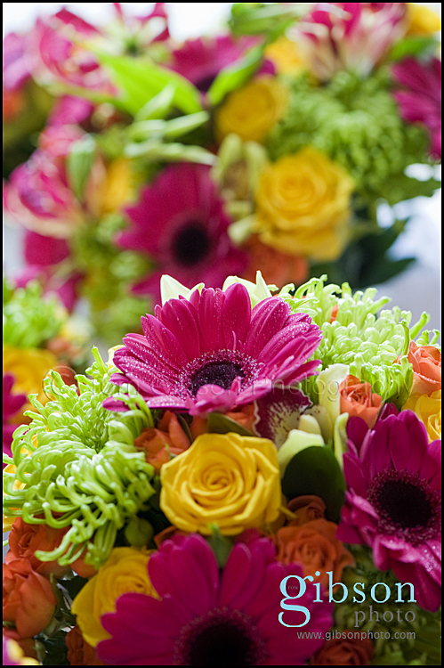 Kirstie's flowers Troon - flower photograph