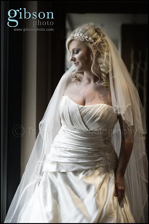 Bride Photograph - Dream Brides Dress