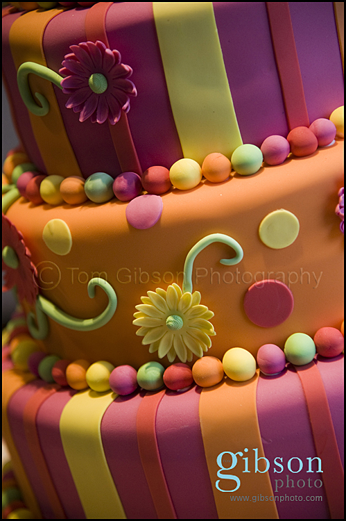 Sugar & Spice Cakes Troon - Cake photograph